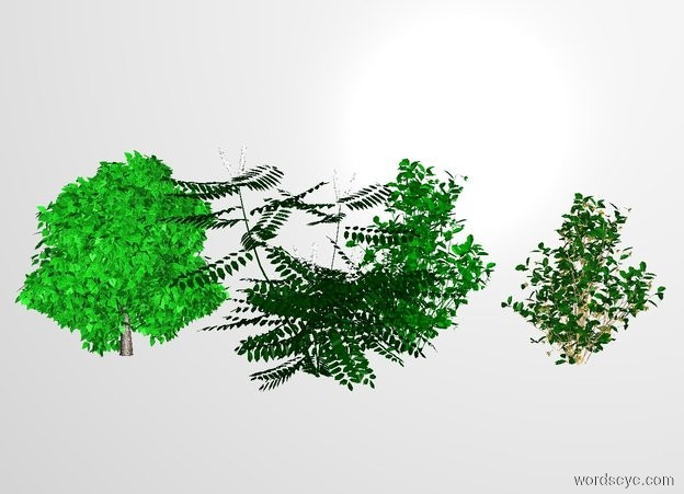Input text: THE WHITE BACKDROP. a 5 feet tall first green bush is 0 feet right of the bush.a second 5 feet tall bush is behind the first bush.a 5 foot tall green tree is 0 feet right of the 2nd bush.