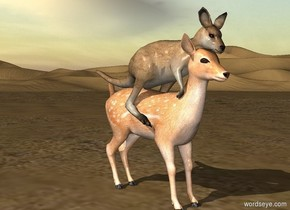 A kangaroo is -3 feet above and -5.2 feet behind a deer. He leans 25 degrees to the front.