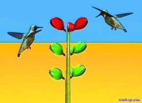 a 1st flower.  ground is orange. sky is dodger blue.  a 2nd lawn green flower is -1.25 feet above the flower.  a 3rd lawn green flower is -1.25 feet above the flower.  a 1st .25 foot tall dull hummingbird is -.28 feet above and -.1 feet in front of and -.1 feet right of the 1st flower. it faces the flower. it leans to the front. a 2nd .25 foot tall dull hummingbird is in front of and -.2 foot left of and -.375 feet above the 1st flower. it faces the flower. it is noon. sun is sea mist blue.