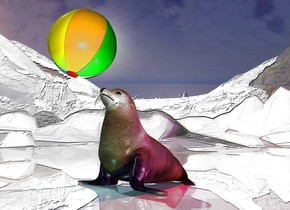 the seal. the shiny glacier backdrop.  the  very tall ground is visible. it is shiny.  the cyan light is in front of the seal. the magenta light is right of the seal. the red light is above the seal.  The beach ball is -2 inches above the seal. it is -10 inches in front of the seal.  the ball is leaning backward.