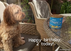 """image-15197 backdrop. """"Happy birthday,"""" is above """"2 today!"""""""