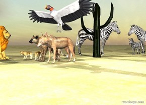 the hyena is a foot from the jackal. the large vulture is above the jackal.  the ground is dirt. it is cloudy. the cactus is 6 feet behind the hyena. A herd is behind it. A pride is next to the hyena.