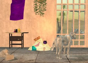 gray dog is facing northeast. big [texture] window is 3 foot behind dog and -3 foot to right.  window is 0.5 foot in ground. wall is -6 inch left of window. wall is 5 foot wide [texture]. ground is [sand]. camera light is old gold. ambient light is morning sky blue. sun is cappuccino brown. big pale skeleton is 4 feet behind window and -9 feet to left.  skeleton is facing up. skeleton is 0.5 feet in ground. 15 foot wide floor is -0.5 foot in front of wall and -8 foot to right. floor is 0.01 inch in ground. floor is 6 foot wide [texture]. 2.8 foot tall pale table is in front of wall and -7 foot to right. 2 foot tall wave is  -1.5 foot right of table.  wave is 0.5 foot wide shiny [gold]. clear lavender tiny  dodecahedron is -2.8 foot right of wave and 1 foot above ground. dodecahedron is -1.8 foot in front of wave. clear cyan very huge diamond is -3  foot left of wave and -2 foot to front. diamond is leaning 45 degrees to left. diamond is 2 inch in ground. shiny crown is -0.5 feet above wave and -3.3 foot to left. crown is leaning 30 degrees to right. a first lilac jar is on table. gold 0.6 foot tall urn is 2 inch in front of jar and 2 inch to right. a 0.45 foot tall flask is 1 inch in front of jar and -2 inch to left. flask's flask is [texture]. gladiolus is -4 inch left of urn and -8 inch to front. gladiolus is facing down. gladiolus is facing southwest. [texture] statue is 3 feet in front of table and -3 feet to left. statue is facing up. statue is facing southeast. flag is 2.5 feet above wave and -1.5 foot to left. flag is upside down. flag is leaning 90 degrees to right. flag's body is [texture]. 9 foot tall joshua tree is 1 foot left of skeleton. tree is facing right.   common ivy is 3 feet above wave. vulture is 1.5 feet above skeleton. vulture is leaning 40 degrees to front.