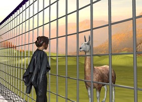item. ground is beige. a [concrete] floor is in front of and -2.45 feet above the item. a 1 foot tall person is on and -.5 feet behind the floor. the person faces back. a 1.1 foot tall llama is .5 foot behind and -.05 foot left of the person. the llama faces the person. sun is linen. a linen light is above the llama.