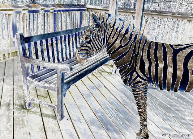 Input text: The  image  backdrop. a zebra is 1 foot above the ground. shadow plane is invisible. camera light is tan. ambient light is gold.