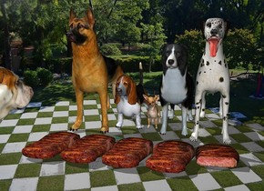 five  dogs.five 3 inch tall steaks are -5 inch in front of the five dogs.a 25 inch tall bulldog is -15 inch left of the five dogs.the bulldog is 20 inch in front of the five dogs.the bulldog is facing northeast.