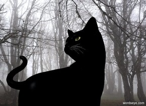 a black cat is in the fog. camera light is black. sun is blue gray. ambient light is silver.