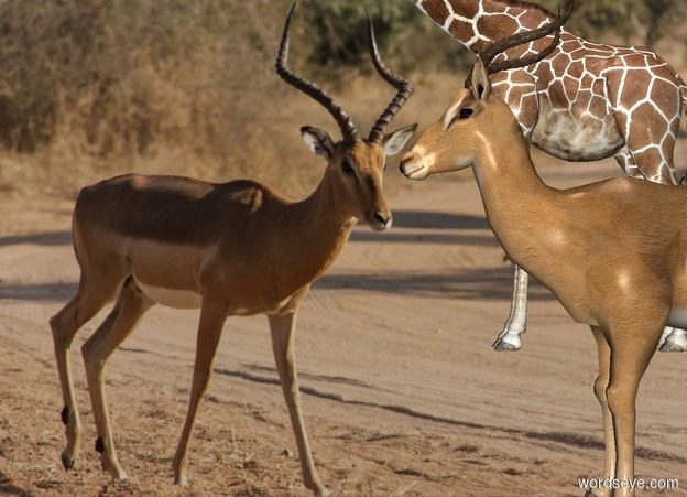 Input text: Africa backdrop. It is noon. An impala is 20 feet right of a giraffe.