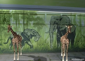 zoo backdrop. A giraffe is on the ground. 2nd giraffe is 18 feet east of him.