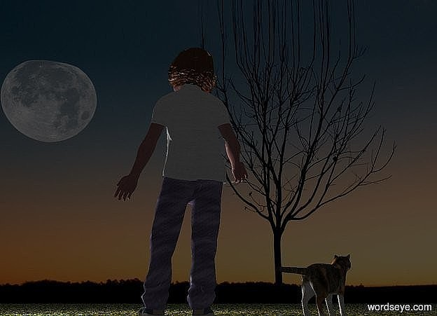 Input text: a cat faces northeast. a girl is left of the cat. she faces back. camera light is black. sun is black. a orange light is 5 feet behind and -3 feet above the girl. a sage light is 2 feet behind and 1 feet left of the girl. ground is grass.