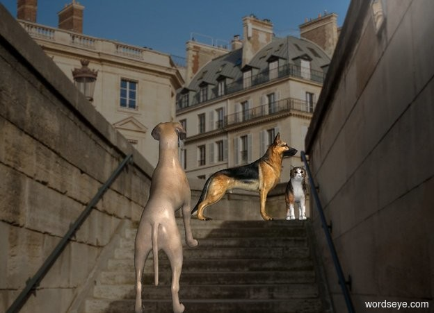 Input text: 70% dark street backdrop.  The dog is 4 feet above the ground. He leans 30 degrees to the back. A dog is 0 feet in front of him. He is -3.5 feet above him. He is -.5 feet west of him. He faces west. A large cat is -.5 feet west of him. He faces north.