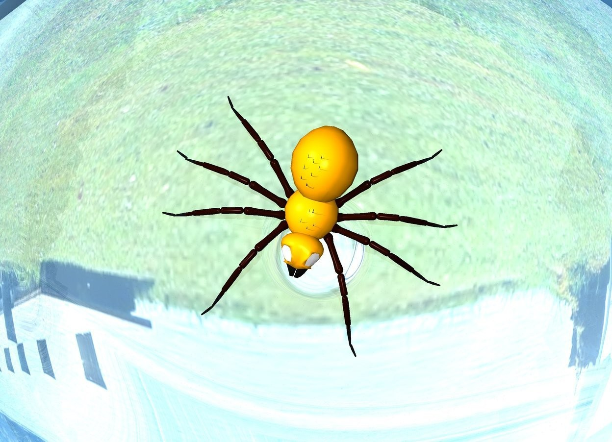 Input text: orange spider in a clear sphere on a silver lake