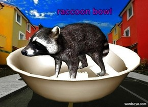 the small raccoon is in large bowl