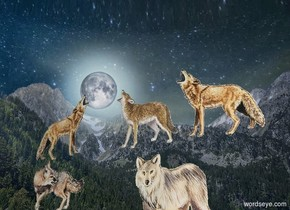 Sky is [fantasy]. ground is invisible. A wolf is on the ground. 2nd wolf is east of him. 3rd wolf is 7 foot west of him. He faces north. A wolf is below him. A wolf is 4 feet east of him and -6 feet above him. A fox is east of him.