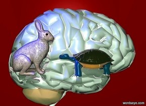 a 100 inch tall shiny brain.backdrop is maroon.a 40 inch tall rabbit is -50 inch above the brain.the rabbit is -10 inch left of the brain.a 18 inch tall shiny turtle is 2 inch in front  of the rabbit.the rabbit is -110 inch in front of the brain.body of the turtle is shiny petrol blue.the turtle is facing the rabbit.sky is malachite green. two  blue lights are above the rabbit.