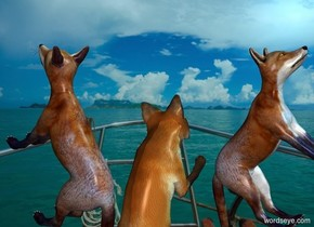 [sailing] backdrop. sky is [sailing]. Sun is sky blue. A fox leans 60 degrees to the back. He faces northwest. A fox is -.9 feet east of him. He faces southwest. He leans 60 degrees to the back.  A fox is -1.5 feet east of him. He faces southeast. He leans 60 degrees to the back.
