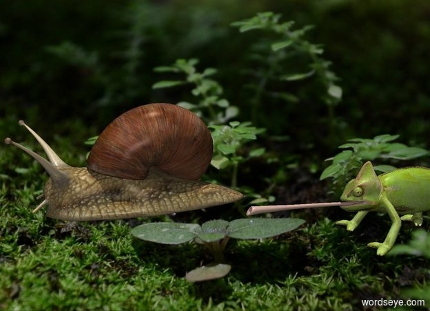 Input text: Camera light is gray. Sun's azimuth is 0 degrees. Sun's altitude is 90 degrees. [woodland] backdrop. sky is [arid climate].  A snail is 0 feet above the ground. A tiny lizard is 0 feet behind him and -.2 feet above him.