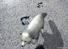 [snow] backdrop. An Arctic fox is on the ground.