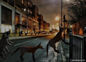 night backdrop. Camera light is black. Sun's azimuth is 225 degrees. Sun's altitude is 45 degrees.  2nd fox leans 45 degrees to back. He faces west. 1st fox is -.7 feet east of him. He faces west. A raccoon is -.9 feet east of him. He faces west. He leans 60 degrees to the back.