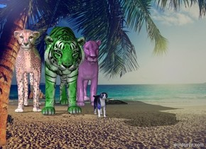 The blue cat is in front of the purple lion .  The ocean backdrop. The board is to the right of the lion. tiger  The tiger is green . the red cheetah  The cheetah is shiny .  The lion has a marble texture.  The lion has a marble texture.  The lion has a marble texture.