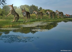 Sun's azimuth is 255 degrees. Sun's altitude is 45 degrees.   [forest] backdrop.  2nd wolf is -.6 feet above the ground. He leans 45 degrees to the back. He faces west. 1st wolf is 5 feet east of him and 5 feet north of him. He faces west. He is 0 feet above the ground. 3rd wolf is 3 foot west of 1st wolf and 5 foot south of him. He faces southwest. A wolf is 1 foot east of 1st wolf. He faces west. A wolf is 0 feet east of him. He faces west. A fox is 1 foot east of him. He faces west.