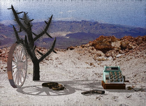 A shiny wheel is -1 foot in front of a cactus. Camera light is black. A tiny snake is 6 inch right of the wheel. It is facing southwest. A shiny cash register is 1.2 feet right of the snake. A gun is left of and in front of the cash register. It is leaning 90 degrees to the right. It faces southwest. It is -2.5 inch above the snake. Sun is baby pink.
