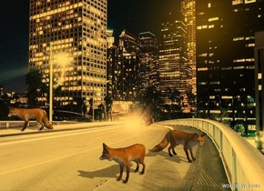 [night] backdrop. Sun's altitude is 45 degrees. Camera light is black. Sun is orange. Sun's azimuth is 90 degrees. Ambient light is gray.  2nd tan fox is 0 feet above the ground. 1st tan fox is -1 feet east of him and 1 feet north of him. He faces east. 3rd tan fox is 6.8 feet west of him and 0 feet south of him. He faces southwest.