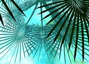 A palm is -20 feet above the 20 foot tall 100% shiny [jungle] cube. Camera light is teal.
