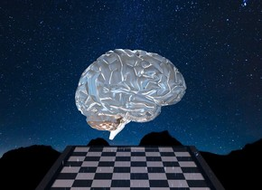 The ground is [hg 1]. the brain is 1000 feet above the ground. The brain is 1.5 feet wide. The brain is reflective. the brain faces east. The bright light is above the brain. The chessboard is 6 inches below the brain. The chessboard is 3 feet wide. The chessboard is shiny 1% dim pink.