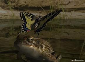 Sun's azimuth is 90 degrees. Sun's altitude is 20 degrees. Camera light is black.  [bird] sky. Sky is 50% dark.   A frog is -.1 feet above the 20% dark shiny grass ground. A butterfly is -.1 feet above him. It leans 45 degrees to the back. It faces north.