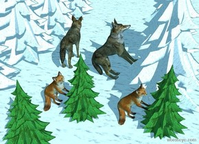 A wolf is on the [snow] ground. 2 [snow] fir trees are 4 feet to the left of the wolf. The sky is [snowfall]. Ambient light is sky blue. Sun's azimuth is -45 degrees. Camera light is black. 5 [snow] fir trees are 1 feet to the right of the wolf. 2nd wolf is -1 foot behind the wolf and .5 feet west of him. He leans 45 degrees to the back. He faces west. He is -.6 feet above the ground. A fox is 3 foot north of him and -2 feet west of him. He faces west. He leans 45 degrees to the back. He is -.4 feet above the ground. A small fir tree is -1 feet west of him.  A small fir tree is 0 feet east of him. A fox is -1 feet east of it. He faces west. He leans 45 degrees to the back. A small fir tree is 1 feet north of him.