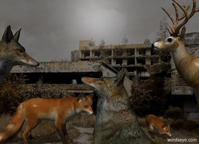 The 50% dark tan city backdrop.  The 2nd fox faces north. 1st fox is 2 feet east of him and 3 foot north of him. He faces west. He is 1 feet above the ground. 1st wolf is -1 feet east of him. He faces west. 2nd wolf is -.5 feet west of him. He leans 45 degrees to the back. He faces east. He is -1.5 feet above the ground.  A deer is -1 feet west of 2nd fox. He faces east.  Sun's azimuth is 0 degrees. Sun's altitude is 45 degrees. Camera light is black.